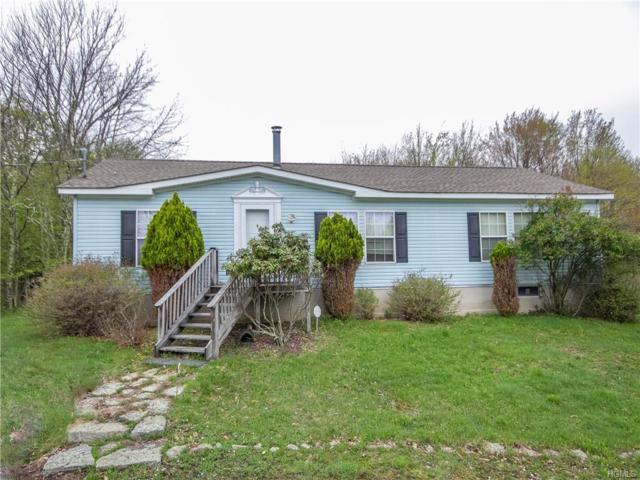 303 Weiner Road, Ellenville, NY 12428 (MLS #4932520) :: Mark Boyland Real Estate Team