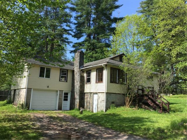 36 Walnut Trail E, Smallwood, NY 12778 (MLS #4932927) :: Mark Boyland Real Estate Team