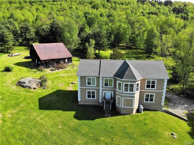 117 Rocky Hill Road, Grahamsville, NY 12740 (MLS #4933043) :: William Raveis Legends Realty Group