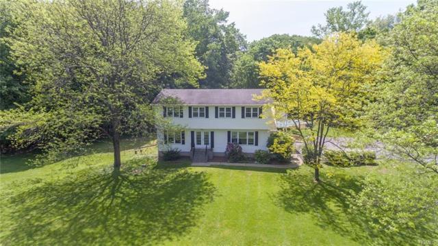 20 Van Orden Road, Milton, NY 12547 (MLS #4933319) :: Mark Boyland Real Estate Team