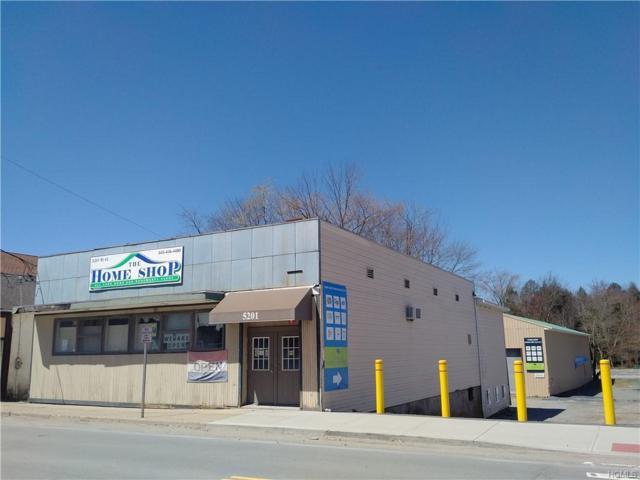 5201 Main Street, South Fallsburg, NY 12779 (MLS #4933509) :: Mark Boyland Real Estate Team