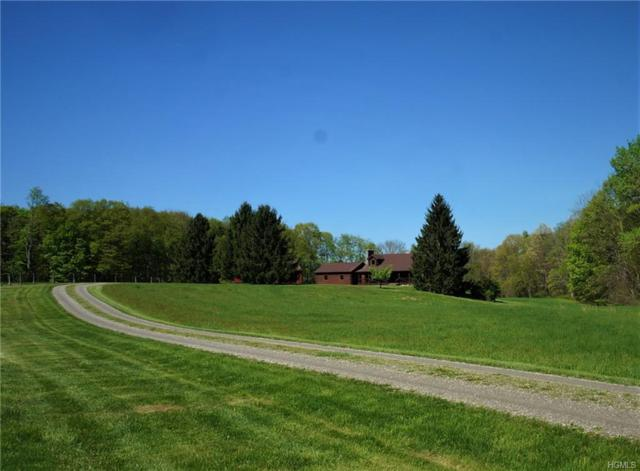 157 Mallory Road, Verbank, NY 12585 (MLS #4933691) :: William Raveis Legends Realty Group