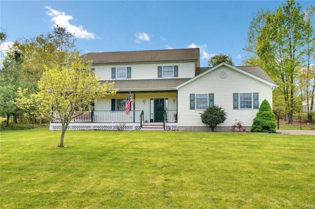 17 Vanderbilt Drive, Highland Mills, NY 10930 (MLS #4933766) :: Mark Boyland Real Estate Team