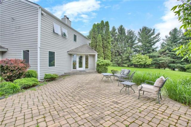 5 Lues Court, Monroe, NY 10950 (MLS #4933890) :: William Raveis Legends Realty Group
