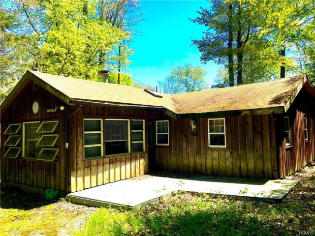 43 Karl Avenue, Bethel, NY 12720 (MLS #4933950) :: Mark Boyland Real Estate Team