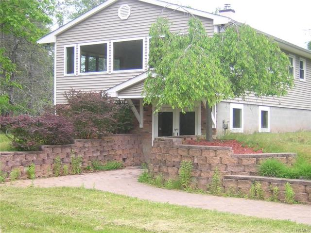 29 Frankie Lane, Liberty, NY 12754 (MLS #4934035) :: Mark Boyland Real Estate Team