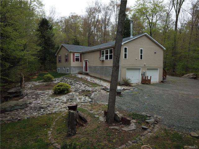 160 Hideaway Drive, Fallsburg, NY 12733 (MLS #4934334) :: Mark Boyland Real Estate Team