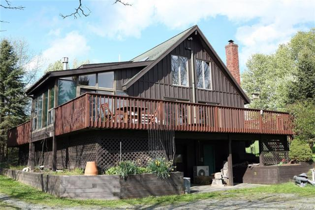 80 Gabel Road, Callicoon, NY 12723 (MLS #4934365) :: William Raveis Legends Realty Group