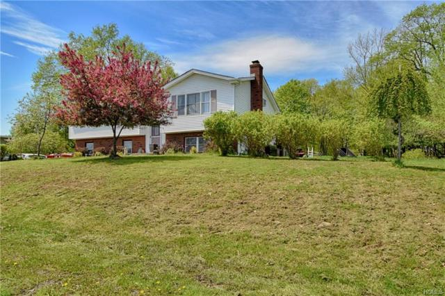 14 View Point Drive, Slate Hill, NY 10973 (MLS #4934655) :: Mark Boyland Real Estate Team