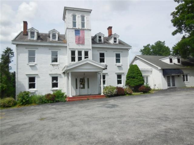 2647 Route 44, Millbrook, NY 12545 (MLS #4934750) :: Shares of New York