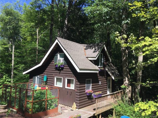 43 Trail Of The Hemlocks, Putnam Valley, NY 10579 (MLS #4935102) :: Mark Boyland Real Estate Team