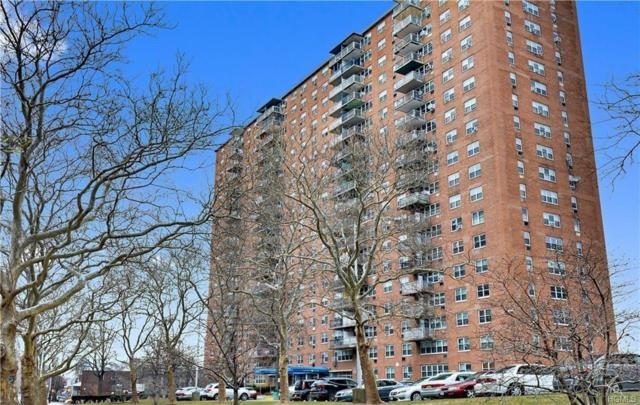 825 Morrison Avenue 5E, Bronx, NY 10473 (MLS #4935423) :: William Raveis Legends Realty Group