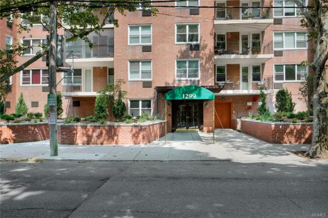 1299 Palmer Avenue #109, Larchmont, NY 10538 (MLS #4935501) :: Marciano Team at Keller Williams NY Realty