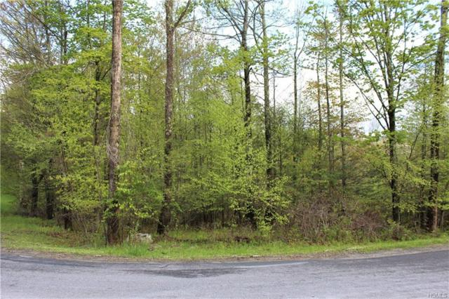 Klothe Drive, Neversink, NY 12765 (MLS #4935743) :: William Raveis Legends Realty Group