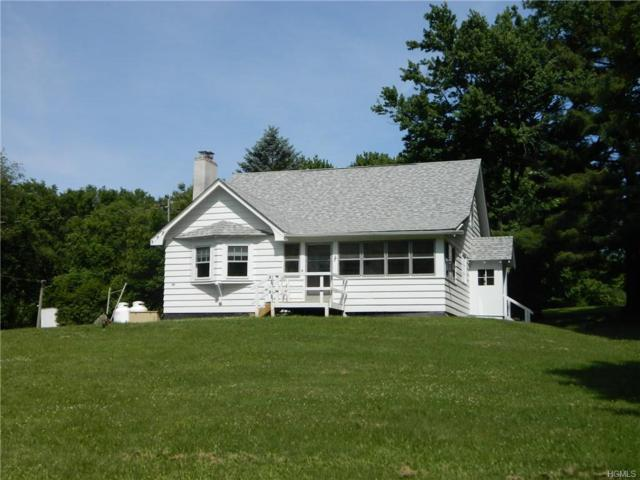 117 S Kaisertown Road, Montgomery, NY 12549 (MLS #4935766) :: Biagini Realty