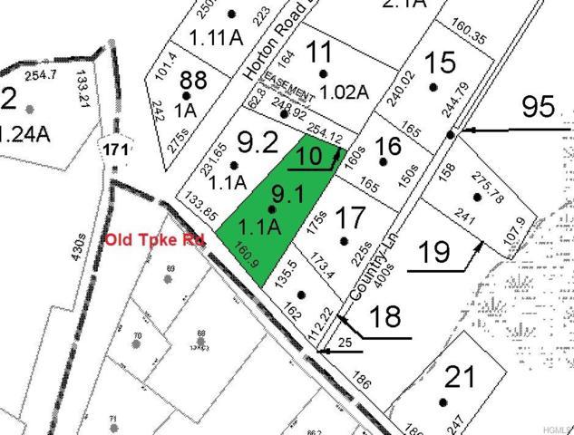 5 Old Turnpike Road, Bloomingburg, NY 12721 (MLS #4935790) :: Mark Boyland Real Estate Team