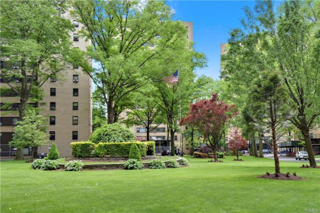 8 Fordham Hill Oval 10C, Bronx, NY 10468 (MLS #4936372) :: Shares of New York