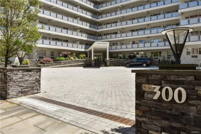 300 Martine Avenue 5G, White Plains, NY 10601 (MLS #4936612) :: William Raveis Legends Realty Group