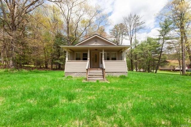 60 Eldred Yulan Road, Eldred, NY 12732 (MLS #4936679) :: Mark Boyland Real Estate Team