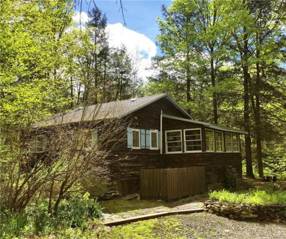 1750 Burnwood Road, East Branch, NY 13756 (MLS #4936695) :: Mark Boyland Real Estate Team