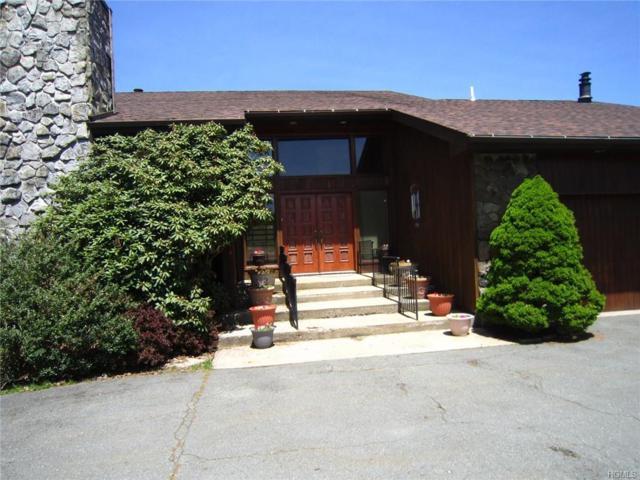 10 Dora Drive, Monticello, NY 12701 (MLS #4936739) :: Mark Boyland Real Estate Team
