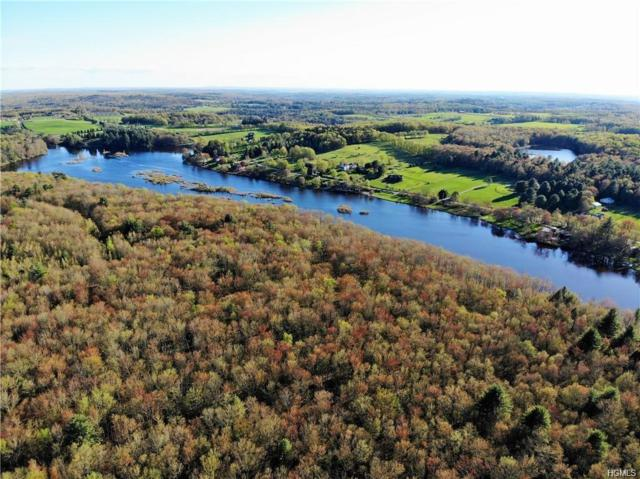 * Darling Road, Bethel, NY 12720 (MLS #4936742) :: Mark Boyland Real Estate Team