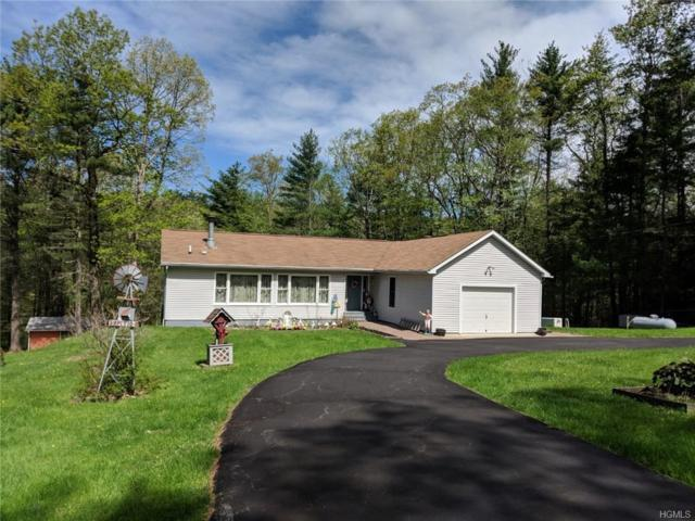 39 Pitio Road, Glen Spey, NY 12737 (MLS #4937368) :: Mark Boyland Real Estate Team