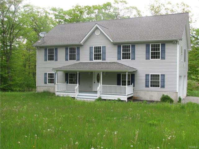 180 Penaluna Road, Monroe, NY 10950 (MLS #4937440) :: Mark Boyland Real Estate Team