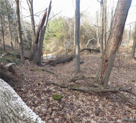 Grist Mill Road, Rosendale, NY 12472 (MLS #4937801) :: William Raveis Legends Realty Group