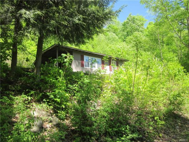 8873 State Highway 30, Colchester, NY 13755 (MLS #4937811) :: Mark Boyland Real Estate Team