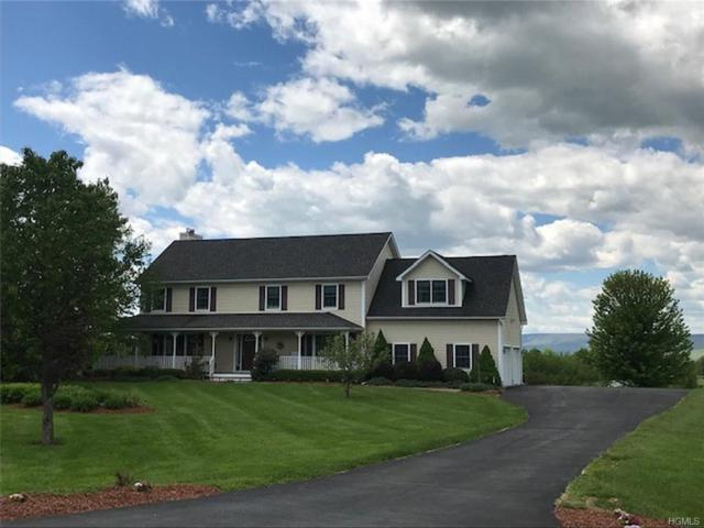 49 Trapps View Farm Road, Wallkill, NY 12589 (MLS #4938362) :: William Raveis Legends Realty Group