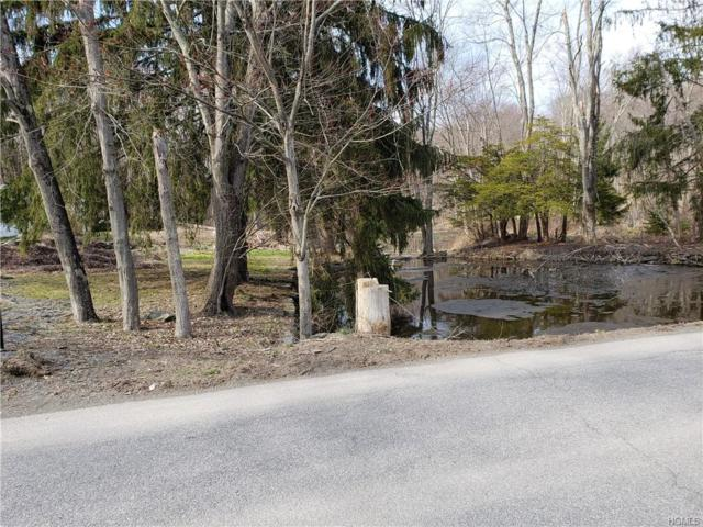 79B Traver Road, Pleasant Valley, NY 12569 (MLS #4938440) :: Mark Boyland Real Estate Team