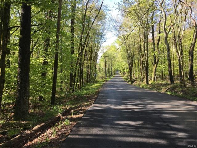 Creamery Road Tr 20, Mongaup Valley, NY 12762 (MLS #4938536) :: Mark Boyland Real Estate Team