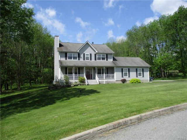 16 Fawn Court, Middletown, NY 10940 (MLS #4938613) :: William Raveis Baer & McIntosh