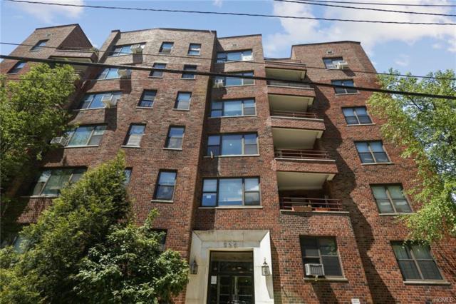 325 Main Street 1D, White Plains, NY 10601 (MLS #4938976) :: William Raveis Legends Realty Group