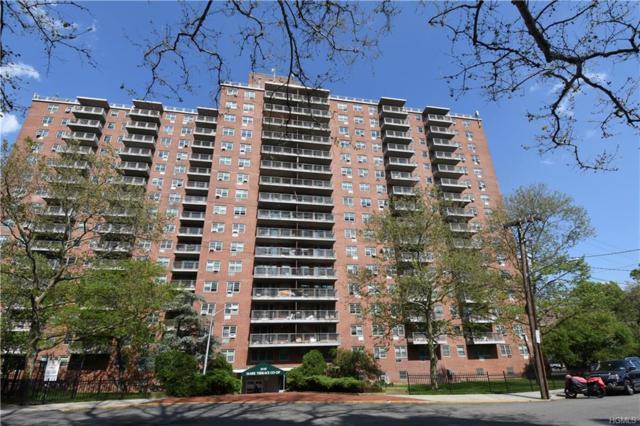 3410 De Reimer Avenue 16C, Bronx, NY 10475 (MLS #4939238) :: Shares of New York