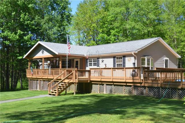 2036 River Road, Downsville, NY 13755 (MLS #4939407) :: Mark Boyland Real Estate Team