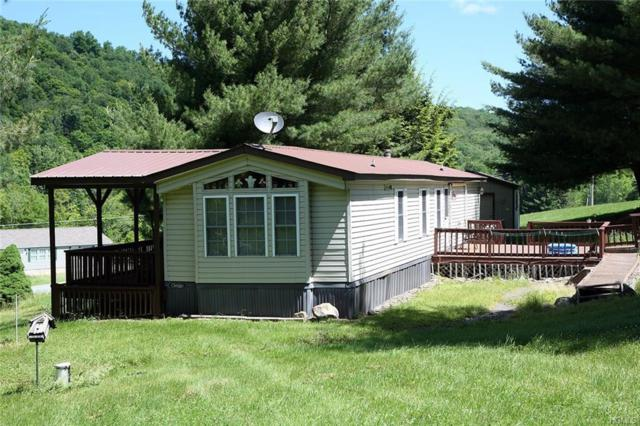 262 County Rd 93, Fremont Center, NY 12736 (MLS #4939843) :: Mark Boyland Real Estate Team
