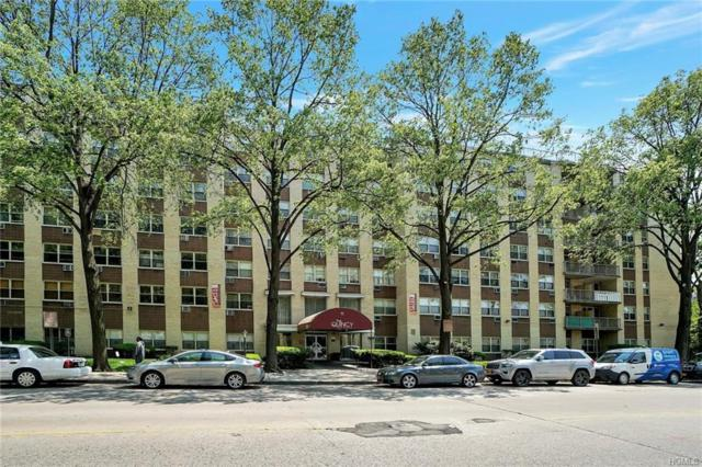 11 Park Avenue 3W, Mount Vernon, NY 10550 (MLS #4939865) :: Shares of New York