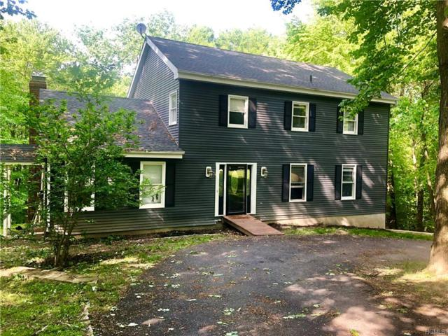 5 Dartantra Drive, Hopewell Junction, NY 12533 (MLS #4940075) :: William Raveis Legends Realty Group