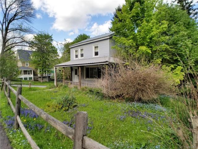 103 Lincoln Place, Liberty, NY 12754 (MLS #4940092) :: William Raveis Legends Realty Group