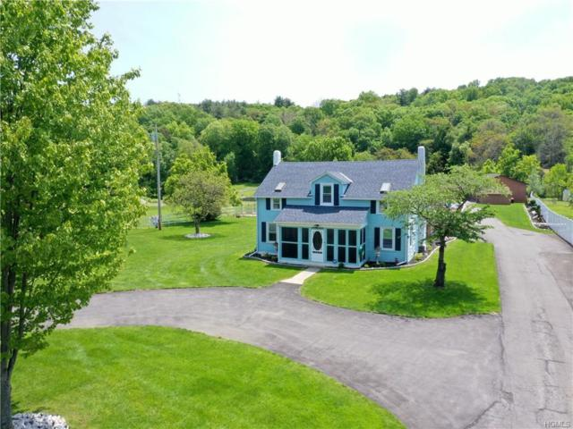 226 New Salem Road, Kingston, NY 12401 (MLS #4940444) :: William Raveis Legends Realty Group