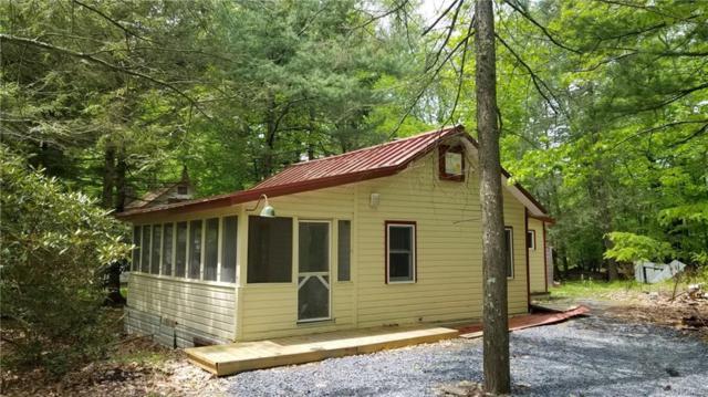 71 Gold Point Road, Rock Hill, NY 12775 (MLS #4940470) :: Mark Boyland Real Estate Team