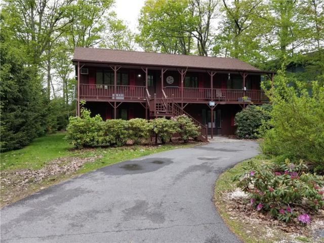 18 Nottingham Gate Road, Rock Hill, NY 12775 (MLS #4940493) :: Mark Boyland Real Estate Team