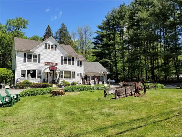 1100 Nys Hwy 17B, Bethel, NY 12720 (MLS #4940566) :: Mark Boyland Real Estate Team