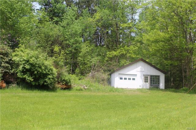 21843 County Highway 17, Roscoe, NY 12776 (MLS #4940608) :: William Raveis Legends Realty Group