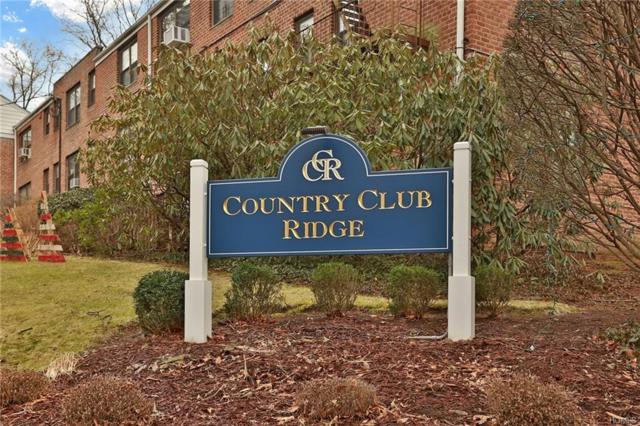 91 Rockledge Road 1B, Hartsdale, NY 10530 (MLS #4940629) :: William Raveis Baer & McIntosh