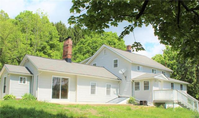1399 Mountain Road, Port Jervis, NY 12771 (MLS #4941026) :: William Raveis Legends Realty Group