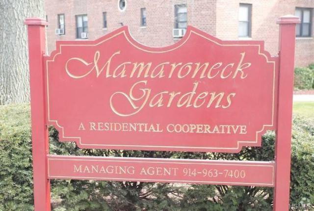 202 Richbell Road C-2, Mamaroneck, NY 10543 (MLS #4941096) :: William Raveis Baer & McIntosh