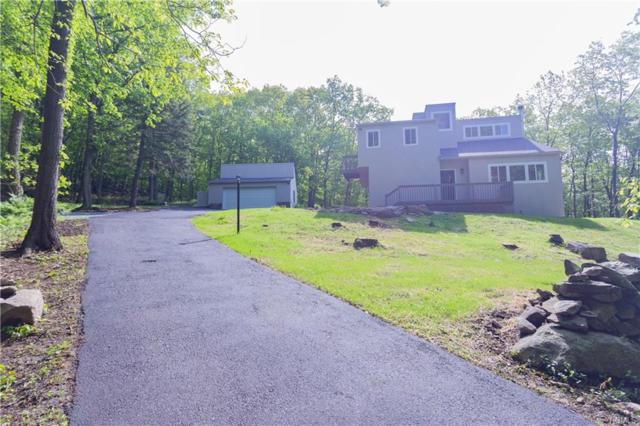 62 Blueberry Lane, Stormville, NY 12582 (MLS #4941182) :: William Raveis Legends Realty Group